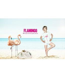 FLAMENCOS PLAY & GO LYCKA