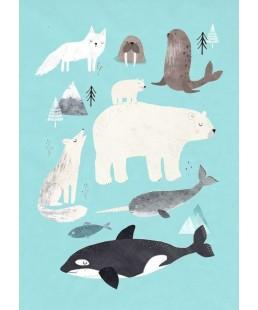 POSTAL ARTIC ANIMALS
